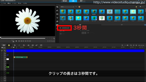 VideoStudioで花が咲く効果 (3)