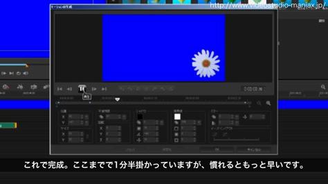 VideoStudioで花が咲く効果 (14)