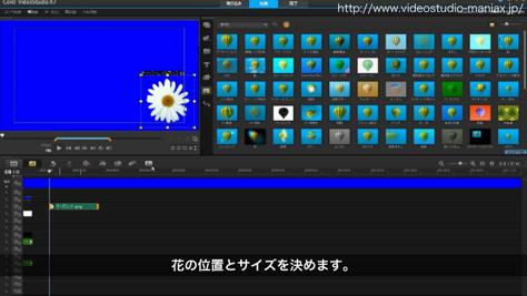VideoStudioで花が咲く効果 (2)